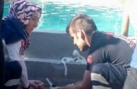 В Турции пять человек погибли от удара током в аквапарке