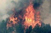 Площадь пожаров в Бурятии увеличилась вдвое