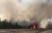 """Пожежа дісталася території поблизу п'ятого енергоблоку ЧАЕС, - співробітниця пресслужби """"Енергоатому"""""""