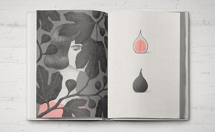 Ілюстрації до книги створила Анастасія Стефурак