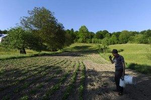 В Украине уменьшается площадь сельхозугодий