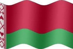 У Білорусі до початку виборів проголосували 20% виборців