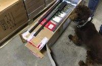 На Львівщині службовий собака знайшов зброю в посилках із США і Канади