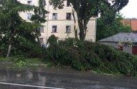 Из-за ливня мост в Каменец-Подольском превратился в водопад