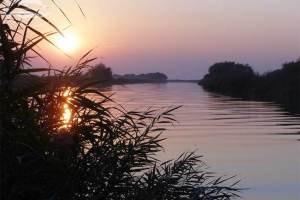Государство реконструирует более 3 км дамбы на Дунае