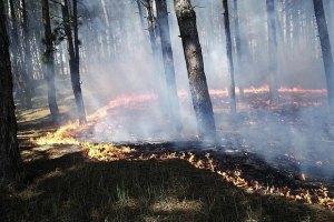 Поблизу Ялти почалася пожежа
