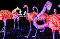 На Певческом поле в Киеве установят гигантские световые инсталляции