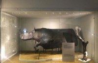 Возвращение доисторических исполинов: уникальная выставка открывается во Львове