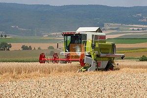 В Одесской области собрали первый урожай