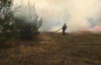 """В МВД заявили, что террористы """"ЛНР"""" поджигают сухую траву у линии разграничения"""