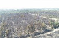 Спасатели на 9-й день погасили пожары в Луганской области