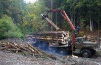 Порошенко підписав закон про мораторій на експорт лісу