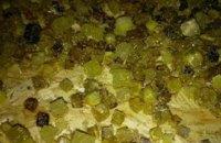 В Киевской области изъяли янтаря на 10 млн гривен