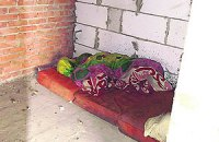Милиция нашла барак, где полтора месяца прятался Мазурок