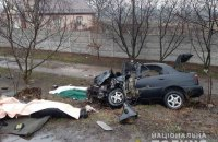 У Житомирській області у ДТП загинули однорічна дитина і троє дорослих