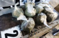 У Миколаївській області чоловік, у якого знайшли марихуану, заявив, що годував нею бджіл