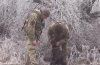 Военный врач пять часов оперировала раненую фронтовую собаку