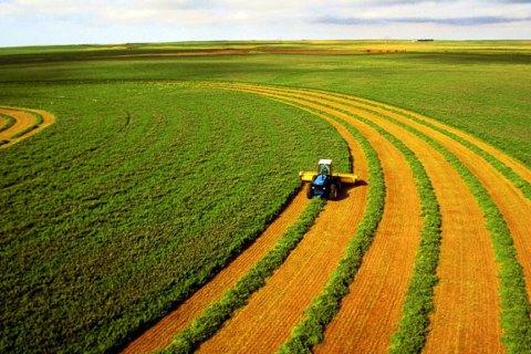 Україна поступилася лише Індонезії за площею земель, контрольованих іноземними інвесторами