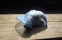 В машину депутата горсовета Рубежного подбросили отрезанную баранью голову