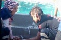 У Туреччині п'ять людей загинули від удару струмом в аквапарку
