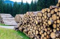 Арбітри визнали, що Україна має право обмежувати експорт лісу за певних обставин