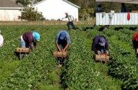 В Україну з країн-партнерів почали надходити запити щодо сезонних робітників