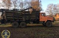 На Харьковщине работников лесничества заподозрили в незаконной вырубке 18 тыс. деревьев