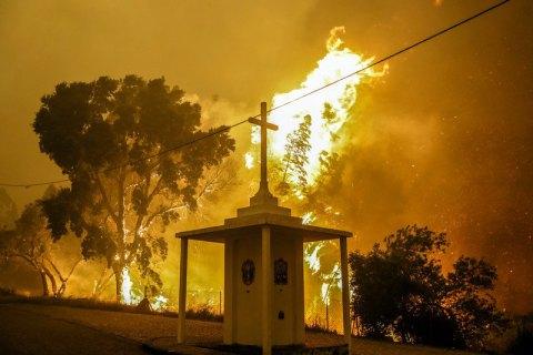 В Португалии при лесном пожаре погибли более 60 человек (обновлено)