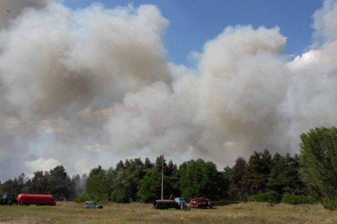 У Дніпропетровській області горить 50 га лісу