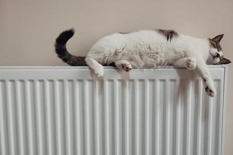 КГГА: включать отопление пока рано