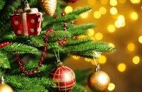 В автономии Боснии и Герцоговины официально перенесли Новый год на 14 января