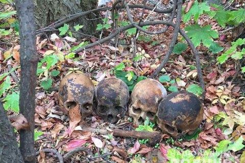 Полиция Николаева разыскала мужчину, который разносил по городу человеческие черепа