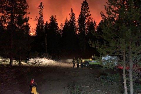 У США на тлі аномальної спеки почалися масштабні пожежі