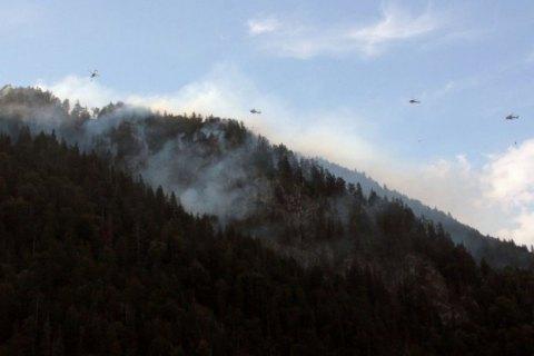 У горах Баварії другу добу палає лісова пожежа