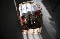 """В редакцию российской """"Новой газеты"""" подбросили баранью голову и похоронный венок"""