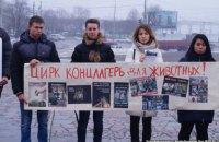 В Днепре протестовали против использования животных в цирках
