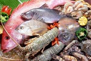 Санаторій Міноборони закупить морські делікатеси