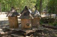 В Одесской области в пчелиных ульях нашли целый арсенал оружия