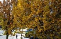 Ноябрь в Европе был самым жарким за всю историю наблюдений