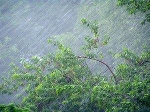Синоптики обещают киевлянам дождь с грозой на Троицу