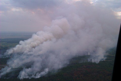 Рятувальники зупинили поширення вогню в Чорнобильській зоні