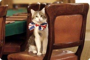 Британский премьер отрицает неприязнь к официальному мышелову