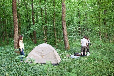 В Киеве обустроили 41 специальную зону отдыха в лесах и парках