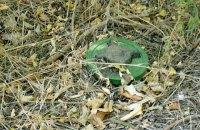 42 ребенка погибли из-за подрыва на минах с начала войны на Донбассе
