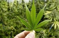 WADA планує виключити марихуану зі списку заборонених речовин