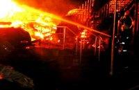 Пожар в одесском детском лагере: найден фрагмент тела третьего ребенка (обновлено)