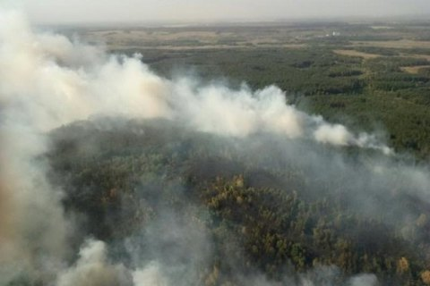 У Харківській області палає близько 70 гектарів лісу