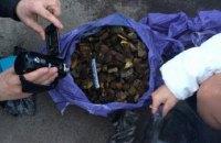 У Рівненській області поліцейські вилучили 65 кг бурштину і мотопомпу