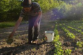 С/х земли обещают продавать только украинцам