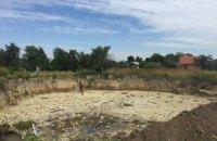 Украина попросит доноров помочь с решением экологических проблем Калуша